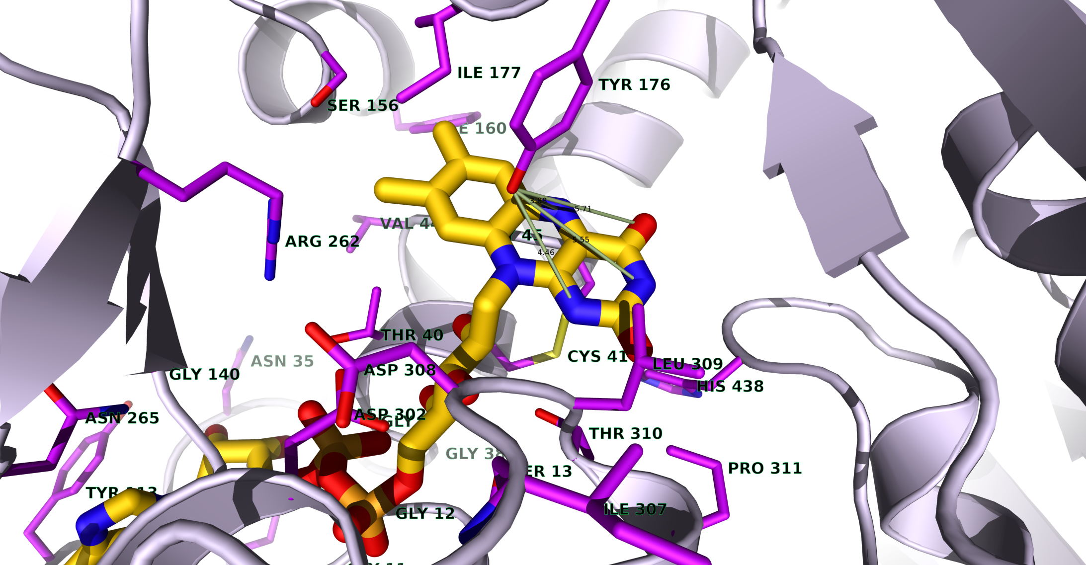 Enzime active site's residues and cofactor