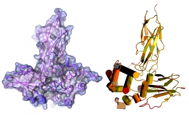 Molecular illustration